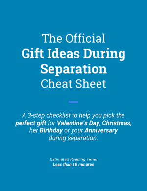 The Official Gift Ideas During Separation Cheat Sheet Cover